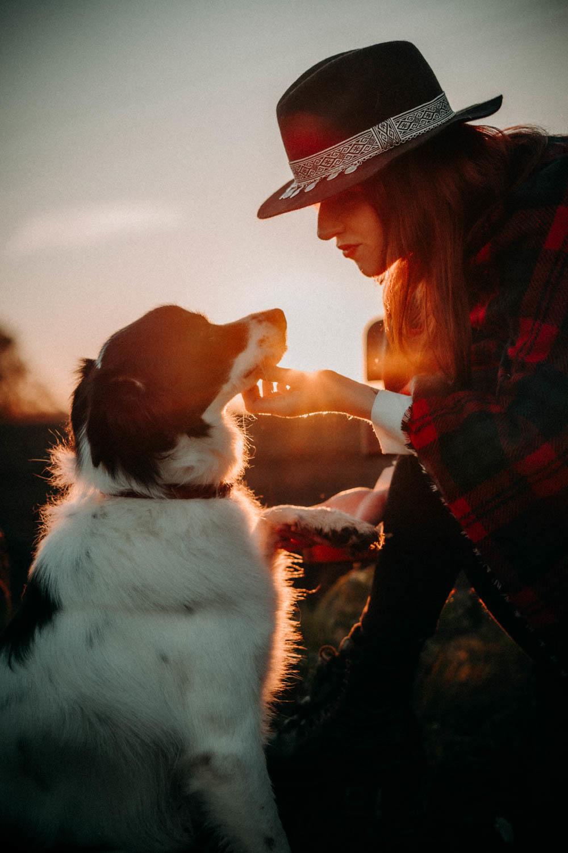 Photos grossesse animaux chien golden hour Genève